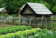 GARDENING Vegetable and Kitchen Gardens / Great ideas and tips to create the vegetable or kitchen garden of your dreams. Whether you're just beginning or a pro!