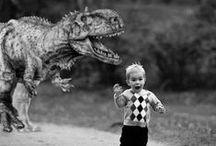 Hilarious / by Melissa Doti