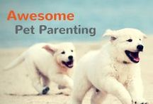 Awesome Pet Parenting / by Pet360.com