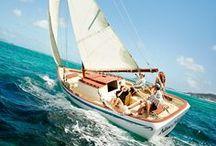 Sail On Sailor / Margaritaville / by Foto Fantasy