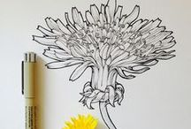 Drawing and Doodles / Doodling and Drawing Inspiration