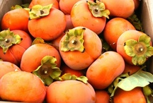 Persimmon / Persimmon is our color and we rock it!