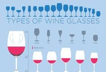 Wine Education / Interesting and educational facts about wine!
