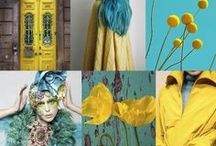 Tranding fashion colors / Tranding fashion colors, collages with nature, patterns