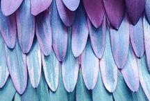 design envy   pattern