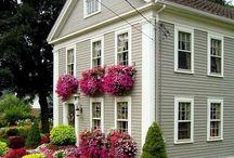 Jardins | Gardening / Flowers, birds, gardens, outdoor wonderful and inspiring.