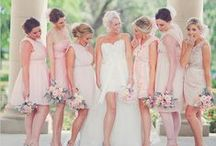 Wedding Party / Wedding Party colors / by Morgan Taylor