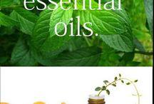 Essential Oils / by Linda Gilson Gloede