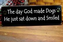 Dog is God spelled backwards... / by Karen Thompson