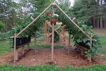 123 ....gardening / by Gab Cliburn