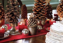 Holiday Inspiration / Recipes, decorating ideas and more to make your holidays memorable! / by LuxeYard