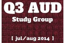 AUD Study Group - CPA Exam / Pinned resources from the AUD Study Group at CPA Exam Club http://www.cpaexamclub.com/group/aud-study-group / by CPA Exam Club