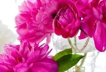 Fleurs / Flowers, Bouquets, Flower Arrangements, Floral Design