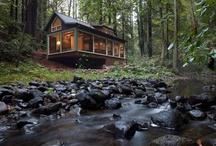 Lost In The Woods / Cabin & Treehouse Porn / by Taryn Garrett