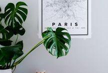 home decor ideas / by Ashlee Spear