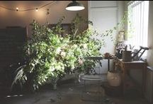 FLOWERS & GREENERY / by COOKES FOOD