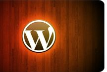 WordPress / by Guy Downes