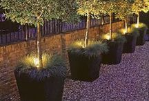 backyard / Backyard ideas, garden decorations, patio.