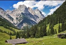 Almen / Die Berchtesgadener Alpen und die Berge des Rupertiwinkels sind seit Jahrhunderten geprägt von den Weideflächen der Bergbauern, den Almen. Auch heute noch sind viele der Almhütten, die sogenannten Kaser, traditionell bewirtschaftet!