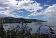 Dunedin / Dunedin, New Zealand