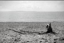 On The Beach / A walk on the beach, 13 April 2012