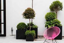 // home : outside // zuhause : draußen // / Backyard and garden inspiration. Flowers, plants, bench, stones, birds and co. Innenhof, Garten, Vorgarten, Hof