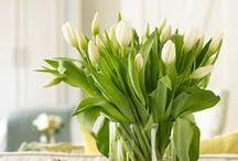 Wiosna / Co małego powinno pojawić się w domu, żeby zobaczyć wielkie zmiany?