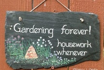 gardening / by Sharon Morris