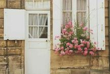 Garden ~ Window Boxes