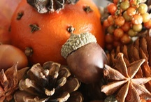 Fall Decorating / by I Do Deals (Dinah)