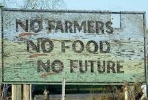 Boeren, Burgers, Buitenliefde / BOEREN BURGERS BUITENLIEFDE = waardering voor het boerenleven op het platteland en respect voor stadse leefwijzen. We gebruiken en promoten locale producten en streekgerechten. Home Made in your own neighbourhood & backyard!  BOER ZOEKT STAD EN STAD ZOEKT BOER. Citypeople say THANK YOU to all the farmers in the world. We're sorry that we've neglected you, now we know better.  Weten waar je voedsel vandaan komt maakt je rijk. NO FARMERS NO FOOD NO FUTURE