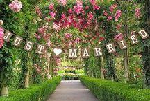 Just Married - Wedding Gifts / Geschenkidden zur Hochzeit - Flitterwochen Geschenke