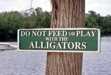 Funny Signs From Around the World / Something to make you smile.