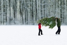 fa la la la / christmas