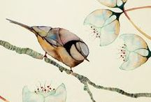 Creature Envy: BIRDS! / by A F
