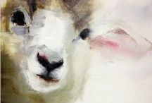 Sheep / by A F