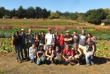 Food Justice - Food Sovereignty