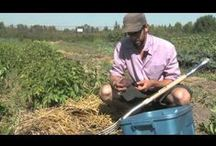 Farmers / Farmers around the world.