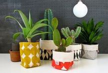 Products I Like / Anything that catches my eye... usually something I want for my home.