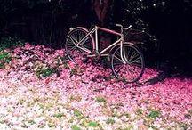Retro Bike Love / Inspiration for the beautiful retro bike I will own one day!