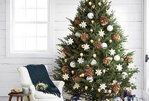 Christmas / Christmas decorating ideas, menu ideas and recipes