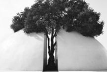 b*: conceptual [Zebra Studies] / Paper Architecture studies with Jack Travis, FAIA