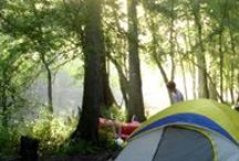 Camping / by Brooke Shumway
