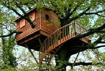 Grownup treehouses / by Kristin Wilcox