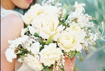 Bridal Party Flowers II / by Shanna Nicole Design