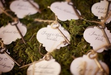 Escort | Place Card | Table Numbers / by Shanna Nicole Design