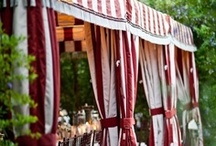 Tents | Draping | Ceiling Decor / by Shanna Nicole Design