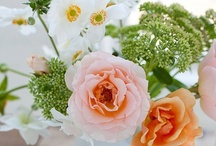 Blooming Beautiful ...