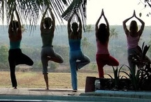 Health and Wellness.. / by Michelle Patino