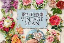Design : Freebies / Digital freebies / by Kat